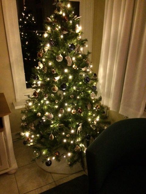 Das Ferienhaus Smoek ist auch in diesem Jahr wieder in Weihnachtsstimmung